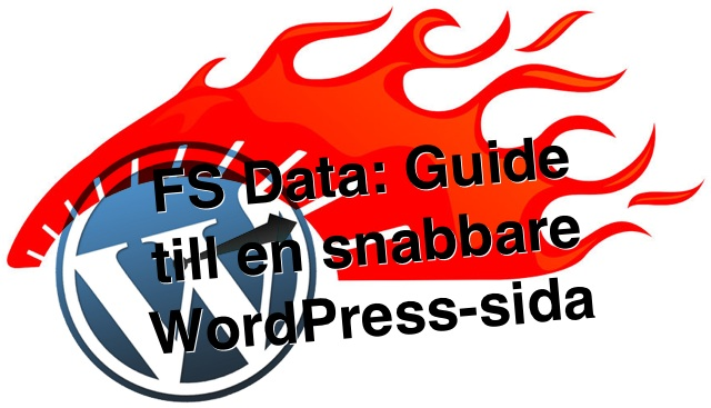 Snabbare WordPress hos FS Data
