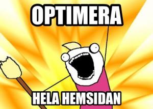 fsdata_optimera_hela_hemsidan
